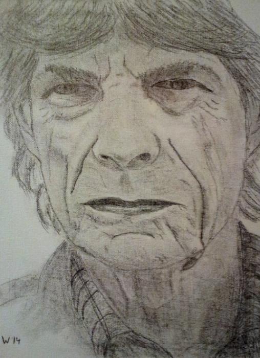 Mick Jagger par dutch036
